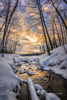 Winter Photography Golden Creek Sunset Sky Orange Clouds Soft Pastels Snow Winter Forest Peaceful Serene Wisconsin Home Decor Landscape Photography Tips, Winter Photography, Amazing Photography, Nature Photography, Photography Backdrops, Photography Books, London Photography, Photography Backgrounds, Photography Colleges