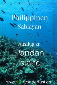 Sablayan ist eine Stadt auf der Insel Negros auf den Philippinen. Von dort aus kannst du die Insel Pandan sehen. Dort befindet sich ein Resort und auch eine Tauchschule. Tipps und Informationen findest du auf unserem Blog. #sablayan #pandanisland #philippinen #tauchen #schnorcheln #resort Bohol, Cebu, Manila, Dive Resort, Crystal Clear Water, Philippines Travel, Sandy Beaches, Beach Resorts, Travel Inspiration