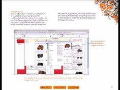 Catalog Software:  Digital Asset Management with Apsiva  - catalog software - http://software.linke.rs/download-software/catalog-software-digital-asset-management-with-apsiva-catalog-software/