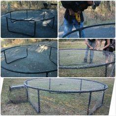 trampoline-bird-cage-chicken-run-idea
