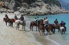 Che ne dite di un'escursione a cavallo, alla scoperta di sentieri segreti e profumi inebrianti della #Sardegna? Potrete raggiungere luoghi impraticabili in macchina e godere di panorami mozzafiato. Ricalcherete lunghi itinerari in mezzo alla natura incontaminata e godrete dell'ospitalità più autentica.      More info: http://www.sardegna.com/it/blog/visitare-sardegna-cavallo/