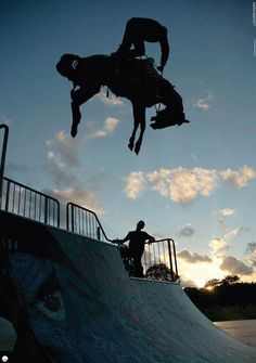 Horse Rodeo Half-Pipe