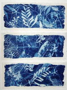 The Nature of Blue Cyanotypes Sun Prints, Nature Prints, Cyanotype Process, Alternative Photography, Arte Sketchbook, Art Abstrait, Ceramic Artists, Printmaking, Monoprint Artists