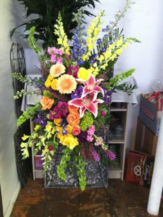 Fortino's Flowers and Gifts Gerbera Daisies, Flowers, Blue Delphinium, Dear Future Husband, Orange Roses, Lilies, Dragons, Ireland, Daisy