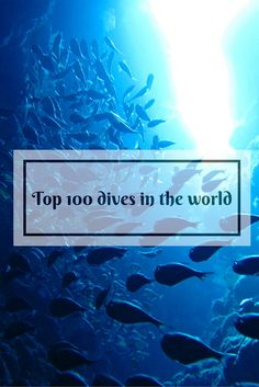 The top 100 dive locations in the world. Best SCUBA diving spots.