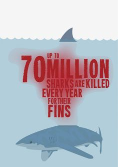 Shark Finning - Extinction is Not an Option! on Behance