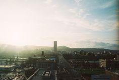 Portland / by Taylor McCutchan