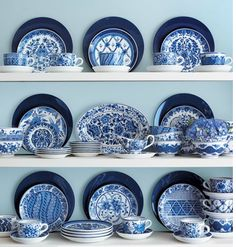 collectioin of blue chinaware