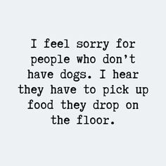 Are these Dog Quotes about me and my dog? - Funny Dog Quotes - new dog quotes hilarious words about not having a dog. The post Are these Dog Quotes about me and my dog? appeared first on Gag Dad. Best Dog Quotes, Cute Dog Quotes, Mom Quotes, Brother Quotes, Daughter Quotes, Father Daughter, Quotes On Dogs, Family Quotes, Short Dog Quotes