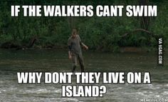 Thoughts while watching the walking dead. The Walking Dead, Best Funny Pictures, Sarcasm, Random Stuff, Thoughts, Sayings, Memes, Movie Posters, Random Things
