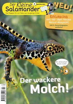 Der Kleine Salamander Nr. 2: Der wackere Molch!