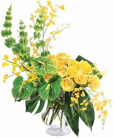 Large Pedestal VaseFoliage: 4 Monstera Flowers: 18 Yellow Roses 3 Anthurium 3 Bells of Ireland 3 Yellow Oncidium Orchids Sunrise Drawing, Sunrise Painting, Best Flower Delivery, Flower Delivery Service, Purple Carnations, Sunrise Photography, Landscape Photography, Nature Photography, Sunrise Wallpaper