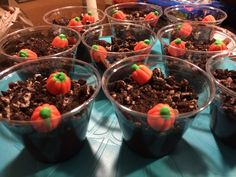 Pumpkin patch dirt cups! I made them healthy by using fat free Lactaid milk, sugar free and fat free chocolate pudding, and reduced fat Oreos :)
