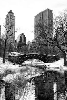 Wall mural snowy gapstow bridge of central park for Central park mural