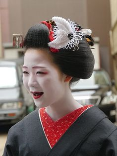 続 閑話休題 京の芸舞妓抄 京都花街の芸妓と舞妓