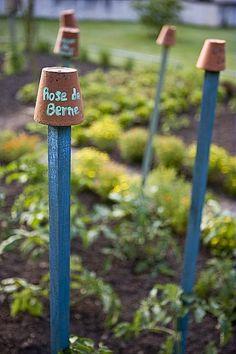 Pot étiquette sur tuteur, étiquetage des plants dde tomates, Le Jardin d'Odile (21 Renève)