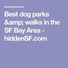 Best dog parks & walks in the SF Bay Area - hiddenSF.com