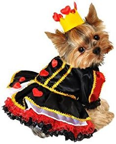 Anit Accessories 12-Inch Royal Queen of Hearts Dog Costume, Small by Anit Accessories Corp.: Amazon.co.uk: Pet Supplies