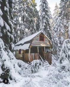 A little rustic cabin in the woods <3 Looking for rustic decor? NorthernHare.Etsy.com