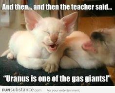 Ha ha so funny lmao