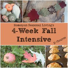 Join the 4-Week Fall Intensive Ecourse from Homespun Seasonal Living!