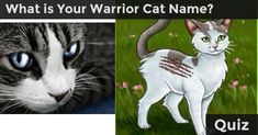 Discover your Warrior Cat name, what clan you belong to, and your destiny!