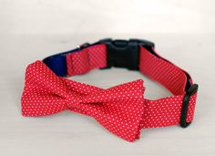 Red Dot Bow Tie Dog Collar -