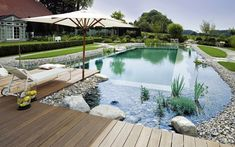 Naturpool Kieselsteine Weidelgras Hütte Wasserpflanzen