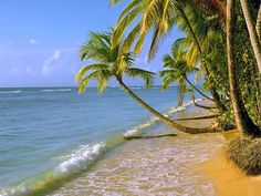 zon, zee en strand THAT'S WHAT I LOVE!