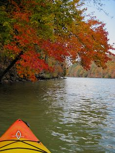 Fall gently onto a river and let nature take the lead.