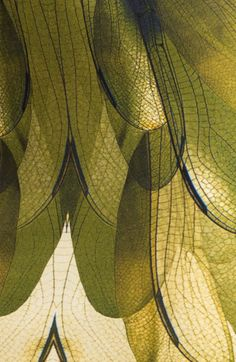 New Moodboard Nature Green Texture Ideas