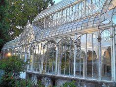 papavero di campo: Firenze. Il giardino dell'Orticoltura. Il Tepidarium, una serra liberty di ferro e vetro