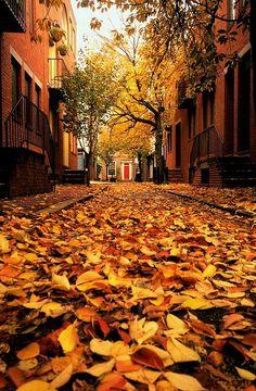 Philadelfia Fall Boots, Warm Socks, Pumpkins, Flannels, Apples, Harvest, Fall Weather, Sweater Weather, Cozy