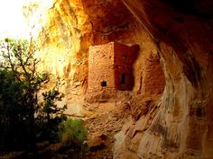 *UTAH ~ BUTLER WASH / COMB RIDGE: Tower House Ruin is located at the head of Butler Wash. This ruin is also very easy to get to.