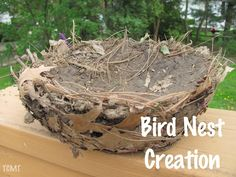 Making a bird nest - I may have to try this next year when we are talking about birds - looks fun!!!