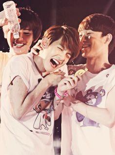 Beagle line #chanyeol #baekhyun #chen