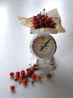 Early cherries on a scale - Miniature in 1:12 by Erzsébet Bodzás, IGMA Artisan