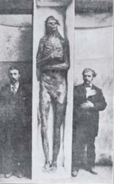 A supposed a photo from Smithsonian's institute of big foot