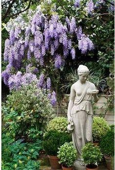 Wisteria, Hebe statue