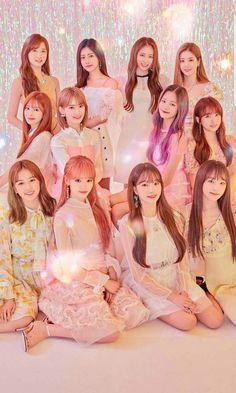 What do you guys think? Kpop Girl Groups, Korean Girl Groups, Kpop Girls, Yuri, Fandom Kpop, Sakura Miyawaki, Japanese Girl Group, Kim Min, I Love Girls