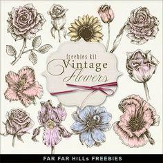Freebies Kit of Vintage Flower Illustrations