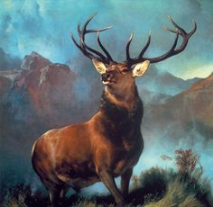 Update your space with this charming Amanti Art Monarch of the Glen, 1851 framed wall art.