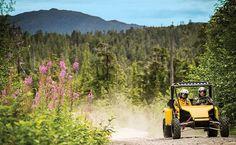 Navigate the Alaskan wilderness on an ATV.