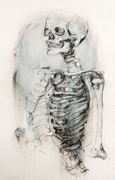 Untitled project - yvonne lin charcoal gauche skeleton drawing