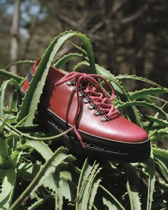 Meet John Bosco, named after a saint fromt the 19th century who believed education and teaching was all about love. And since there is some serious lovin' put into this shoe, the name makes perfect sense.  The shoe sits on our very own custom sole, with the logo subtly visible in the sidewalls and the tread pattern.