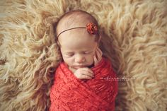 coral sack for newborn | Home > Baby Wraps > Coral Stretch Lace Layer Wrap Newborn Photography