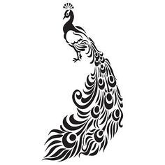 peacock outline - Google Search