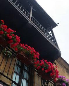 Balcones  #balcones #cantabriasan #cantabria #turismo #cantabriayturismo #cantabria_y_turismo #cantabriainfinita #cantabros #arquitecturatradicional  #cantabriaverde #cantabriarural #igerscantabria #paseucos #paseúcos #cantabriamola #igercantabria #igcantabria #fotocantabria #follow #picoftheday #instapic #fotodeldia #pasionporcantabria #latierruca #lamontaña Esta imagen tiene copyright