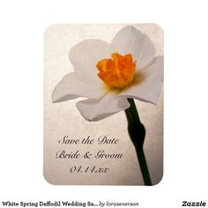 White Spring Daffodil Wedding Save the Date
