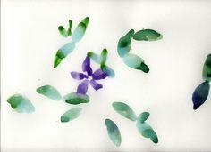 Jardín de Pulgarcito 7. planta acuarela original unica firmado autor artista pintura 24x32 firmado entrega sin marco. regalo naturaleza de yolopinto en Etsy